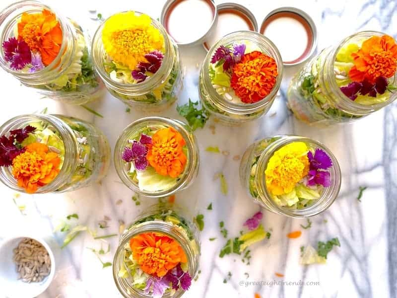 Overhead shot of 8 Psychedelic Salads in jars.