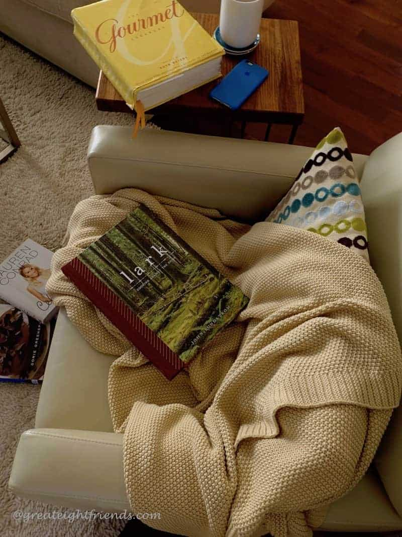 A big comfy chair with a throw and several cookbooks strewn around.