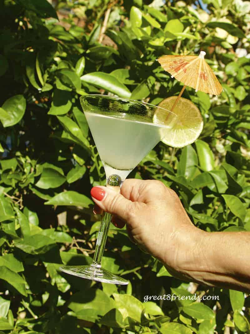 A hand holding a rum daiquiri in a martini glass garnished with a lime and umbrella in front of bushes.