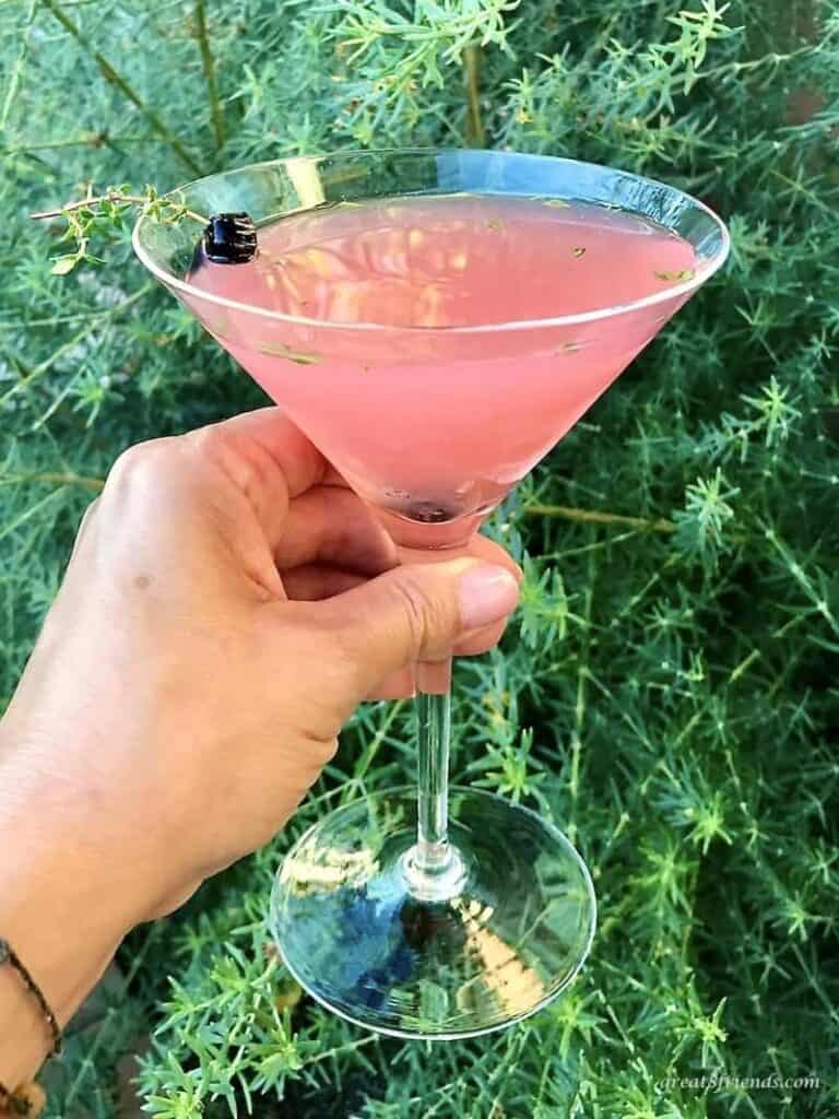 A thyme martini being held in front of a plant.