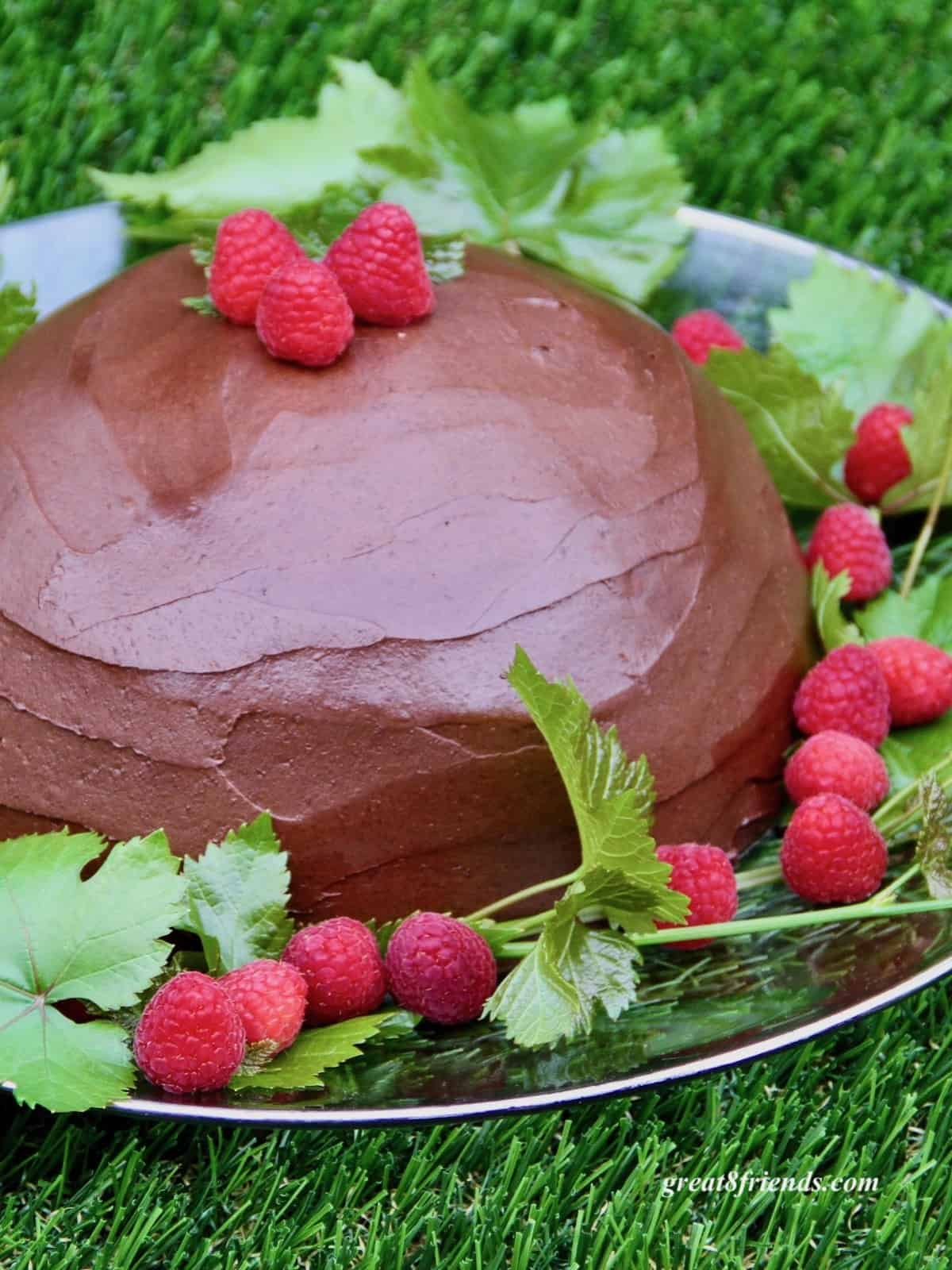 Zuccotto Cake with chocolate frosting garnished with raspberries and leaves.